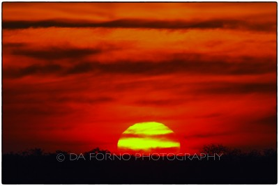 Namibia - Etosha National Park - Sunset - Canon EOS  7D / EF 400mm f/2.8 L IS II USM + 1.4x III