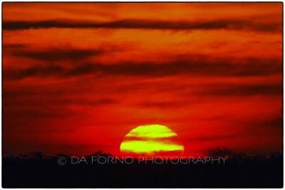 Namibia - Etosha National Park - Sunset - Canon EOS  7D / EF 400mm f/2.8 L IS II USM + 1.4x III