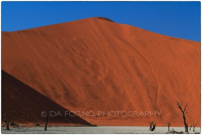 "Namibia - Sossusvlei area - Deadvlei - ""Big Daddy"" - Canon EOS  7D / EF 70-200mm  f/2.8 L IS II USM +1.4x III"