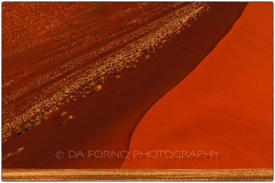 Namibia - Sossusvlei area - Dune 45 - Canon EOS  7D / EF 70-200mm  f/2.8 L IS II USM