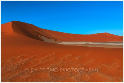 Namibia - Sossusvlei area - Deadvlei - Canon EOS  5D III / EF 24-70mm  f/2.8 L USM