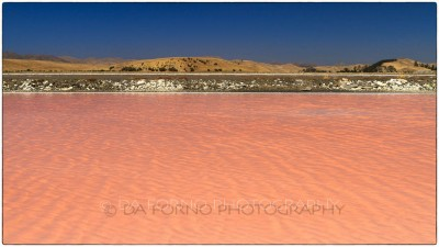 New Zealand - Little salar near Picton - Canon EOS 7D - EF 24-70mm f/2,8 L USM